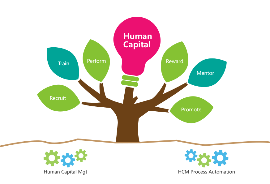 human capital planning template - 8manage human resource mgmt system hr management software
